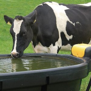 Oval Fast Fill Water Troughs