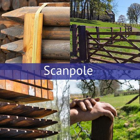 scanpole category